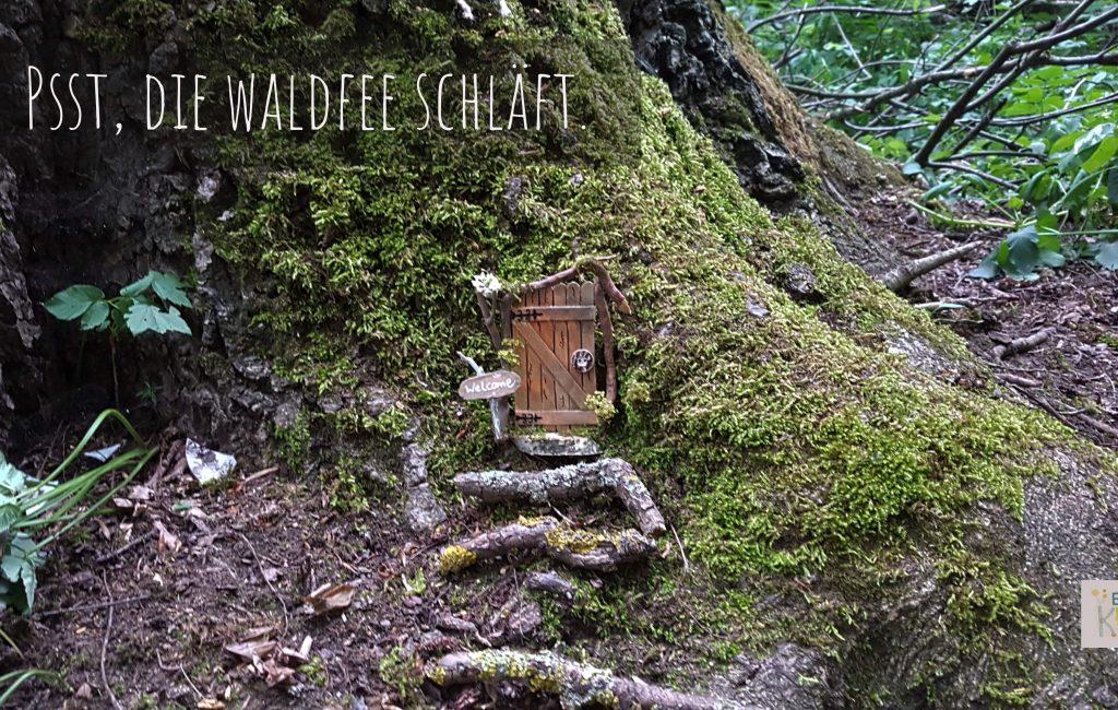 Psst, die Waldfee schläft…